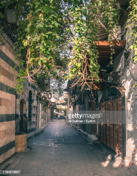 narrow alley amidst buildings in city - syria stock pictures, royalty-free photos & images