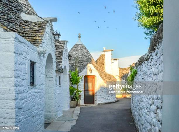 Narrow alley with trulli houses in Alberobello