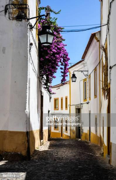 Narrow cobblestone streets in Portugal