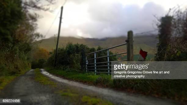narrow country road - gregoria gregoriou crowe fine art and creative photography. stockfoto's en -beelden