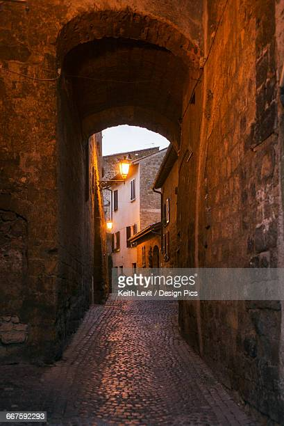 A narrow covered walkway of cobblestone leading to a light and houses at dusk