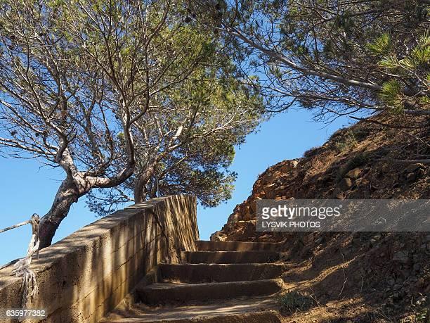 Narrow footpath along the coast of Begur