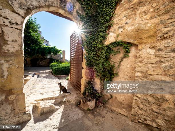 a narrow medieval street with an arab style illuminated by sunlight in spring. village of bocairent, valencia. - 石造りの家 ストックフォトと画像
