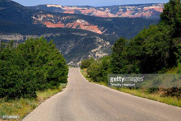 narrow road with tree covered red mesas beyond - timothy hearsum stock pictures, royalty-free photos & images