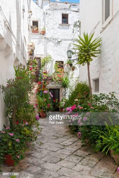 narrow street with flowerpots, locorotondo, puglia, italy - locorotondo stock photos and pictures