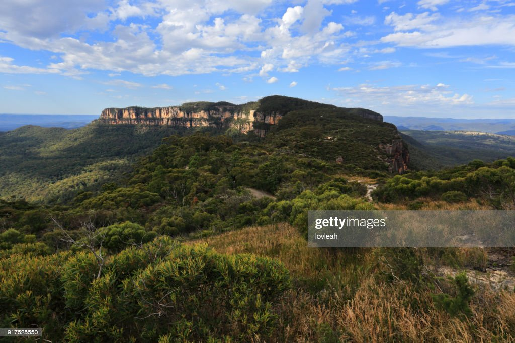 Narrowneck Plateau, Blue Mountains Australia : Stock Photo