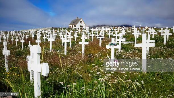 Narsaq cemetery white crosses