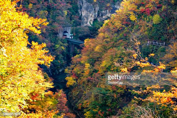 Naruko Gorge in Autumn, japan