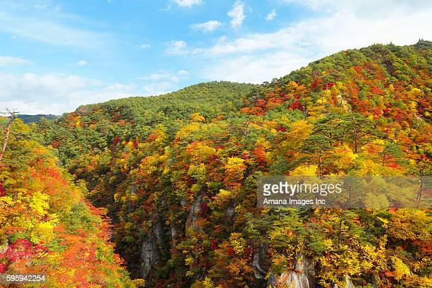 narukokyo in autumn - miyagi prefecture stock pictures, royalty-free photos & images