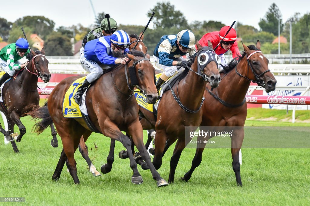 Spicer Thoroughbreds Handicap : News Photo