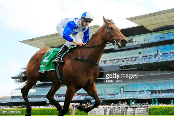 Nash Rawiller on The Bostonian wins race 5 the Heineken 3 Canterbury Stakes during Sydney Racing at Royal Randwick Racecourse on March 07, 2020 in...