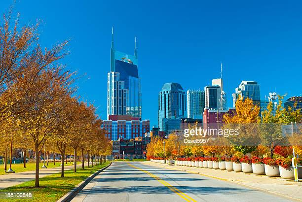 nashville skyline and fall plants - tennessee stock pictures, royalty-free photos & images