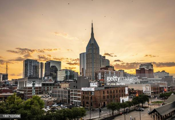 nashville skyline - brycia james stock pictures, royalty-free photos & images