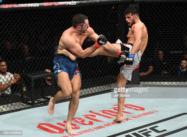 Nasrat Haqparast of Germany kicks Thibault Gouti of France in their lightweight bout during the UFC Fight Night event inside Avenir Centre on October...