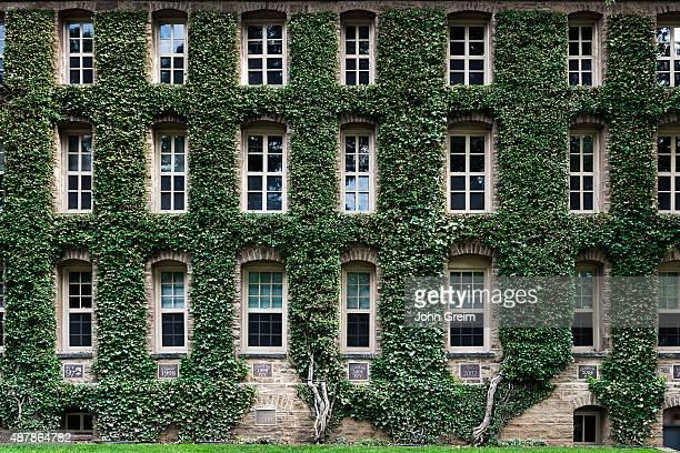 Nassau Hall ivy, Princeton University Campus.