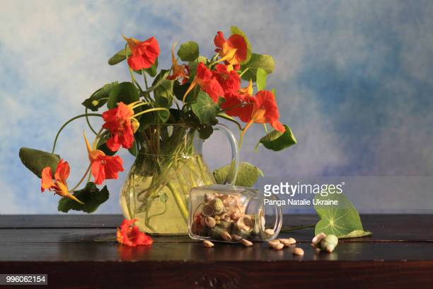 Nasturtium Bouquet and Inverted Glass Jar with Tiny Seashells