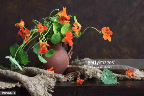 Nasturtium Bouquet, Ceramic Jug And Burlap