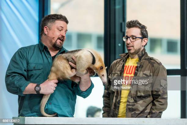 Nat Geo WILD host David Mizejewski discusses Pet Talk with moderator Matt Forte and a A Tamandua anteater during the build series at Build Studio on...