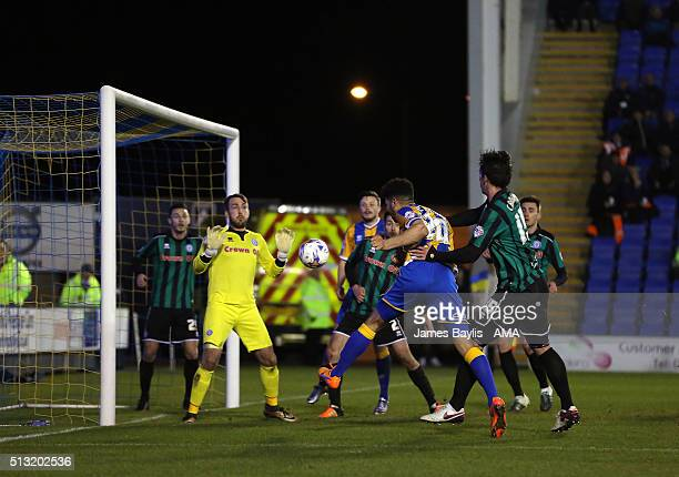Nat KnightPercival of Shrewsbury Town scores a goal to make it 20 during the Sky Bet League One match between Shrewsbury Town and Rochdale at New...
