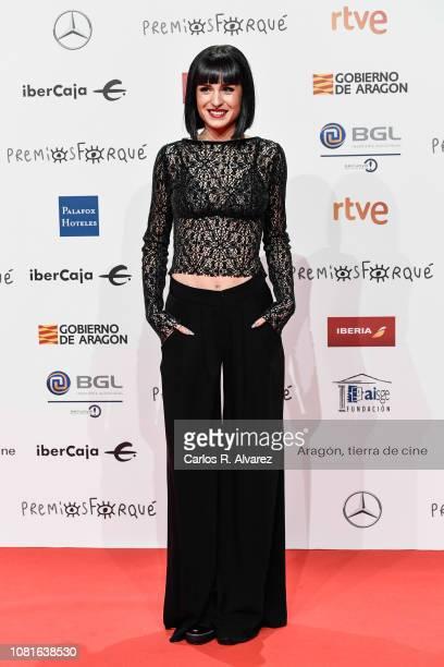 Natalia attends the red carpet during 'Jose Maria Forque Awards' 2019 at Palacio de Congresos on January 12 2019 in Zaragoza Spain
