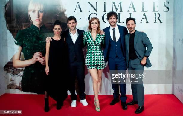 Natalia Mateo Jota Linares Natalia Molina Daniel Grao and Ignacio Mateos attend 'Animales Sin Collar' Premiere in Madrid on October 17 2018 in Madrid...