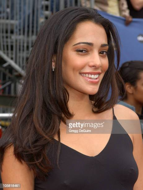 Natalie Martinez during 33rd Annual Daytime Emmy Awards Arrivals at Kodak Theatre in Hollywood CA United States