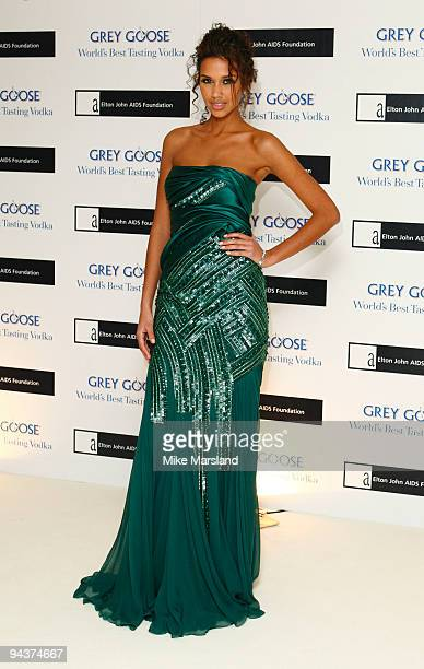 Natalie Suliman attends the Grey Goose Character Cocktails Winter Fundraiser at the Grosvenor House Hotel on December 13 2009 in London England