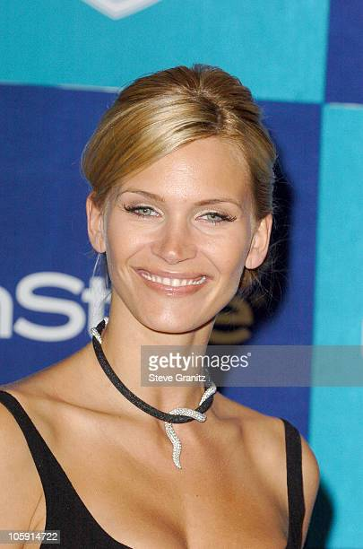 Natasha Henstridge during InStyle & Warner Bros. 2006 Golden Globes After Party - Arrivals at Beverly Hilton in Beverly Hills, California, United...