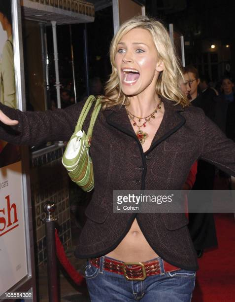 "Natasha Henstridge during ""Spanglish"" Los Angeles Premiere - Red Carpet at Mann Village Theater in Los Angeles, California, United States."