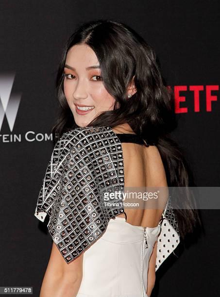 Natasha Liu Bordizzo attends the Premiere of Netflix's 'Crouching Tiger Hidden Dragon Sword Of Destiny' at AMC Universal City Walk on February 22...