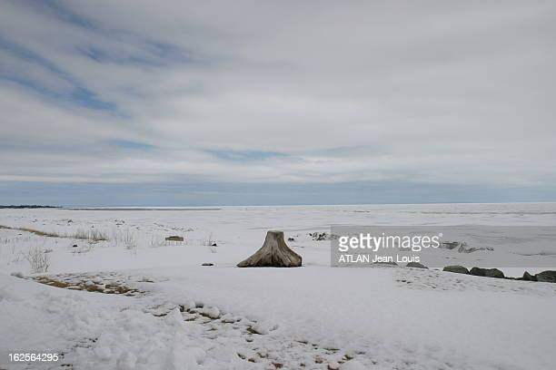 Natasha St Pier Paysage enneigé du New Brunswick au Canada