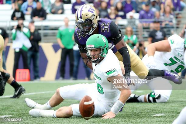 Nate Ketteringham of the North Dakota Fighting Sioux fumbles the football against Ariel Ngata of the Washington Huskies in the first quarter during...