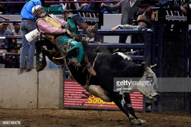 Nate Perry of Elk City OK loses his grip on Vitalix Ringo for no score in the Bull Riding competition during the National Western Stock Show in the...