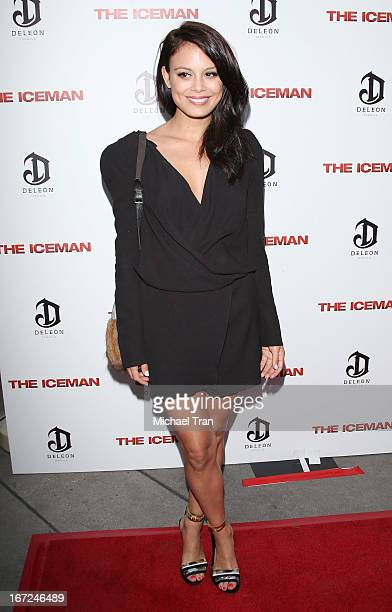 Nathalie Kelley arrives at the Los Angeles premiere of The Iceman held at ArcLight Hollywood on April 22 2013 in Hollywood California