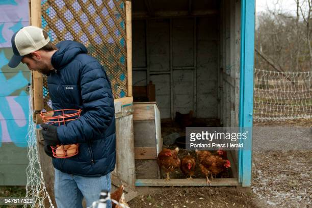 Nathan Cross an educator at Wolfe's Neck Center brings freshly laid eggs out of the coop so that children at the First Time Farmers program at the...