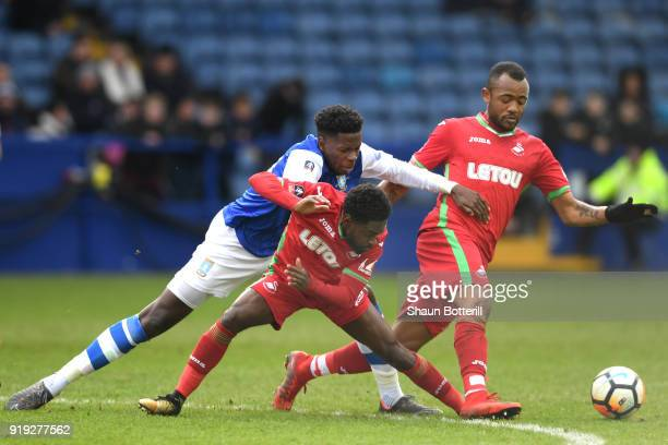 Nathan Dyer and Jordan Ayew of Swansea City challenge Lucas João of Sheffield Wednesday for the ball during the The Emirates FA Cup Fifth Round...