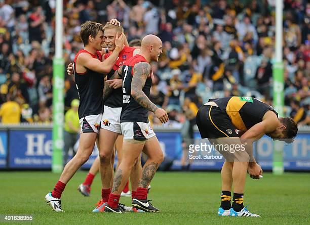Nathan Jones and Dom Tyson of the Demons celebrate on the final siren as Brett Deledio of the Tigers looks dejected during the round nine AFL match...