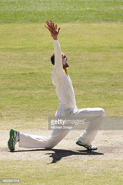 Nathan Lyon of Australia appeals unsuccessfully for the wicket of Murali Vijay of India during day five of the First Test match between Australia and...