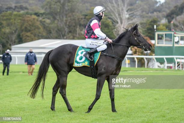 Nathan Punch returns to the mounting yard on Augmentation after winning the bet365 Maiden Plate at Kilmore Racecourse on September 27 2020 in Kilmore...