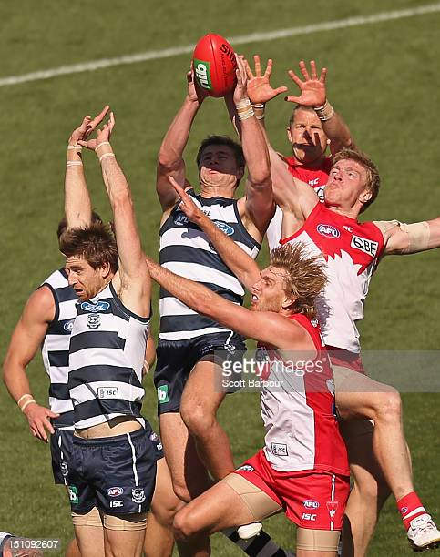 Nathan Vardy of the Cats and Tommy Walsh of the Swans compete for the ball during the round 23 AFL match between the Geelong Cats and the Sydney...