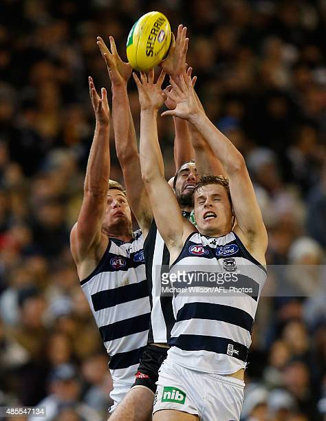 Nathan Vardy of the Cats Brodie Grundy of the Magpies and Jake Kolodjashnij of the Cats compete for the ball during the 2015 AFL round 22 match...