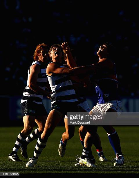 Nathan Vardy of the Cats contests a boundary throw in with Will Minson of the Bulldogs during the round 11 AFL match between the Geelong Cats and the...