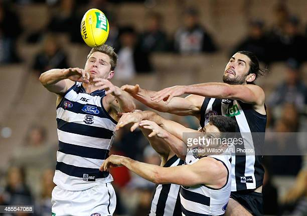 Nathan Vardy of the Cats Darcy Moore of the Magpies Harry Taylor of the Cats and Brodie Grundy of the Magpies compete for the ball during the 2015...