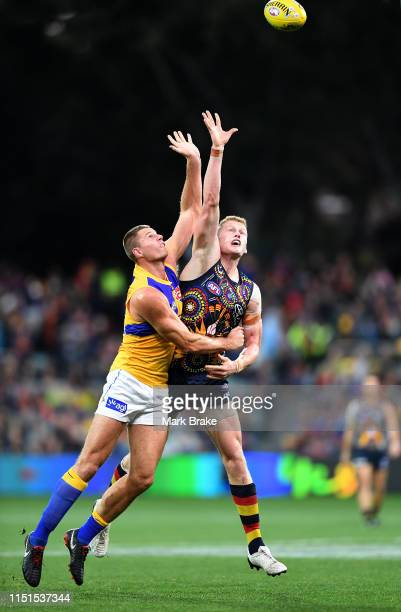 Nathan Vardy of the Eagles rucks against Reilly O'Brien of the Adelaide Crows during the round 10 AFL match between the Adelaide Crows and the West...