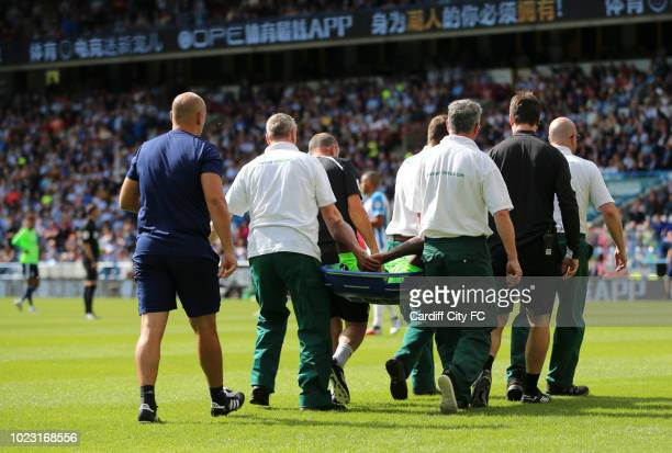 Nathaniel MendezLaing of Cardiff City FC is stretchered off during the Premier League match between Huddersfield Town and Cardiff City at John...