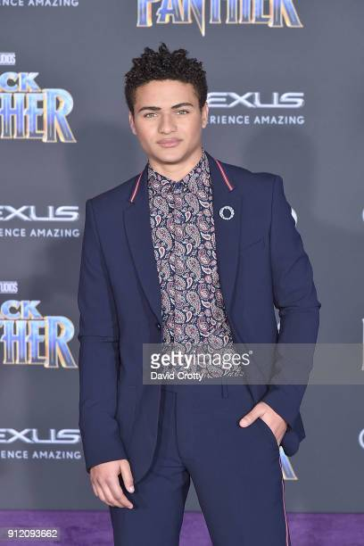 Nathaniel Potvin attends the Premiere Of Disney And Marvel's 'Black Panther' Arrivals on January 29 2018 in Hollywood California