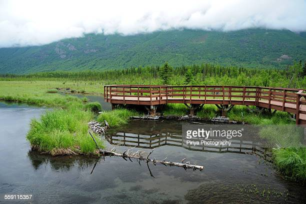 nation trail viewing deck - chugach state park stock pictures, royalty-free photos & images