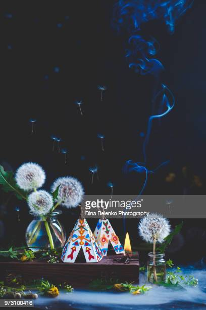 national american teepee with a bonfire and rising smoke in a still life with dandelions and flying dandelion - kampeertent stockfoto's en -beelden