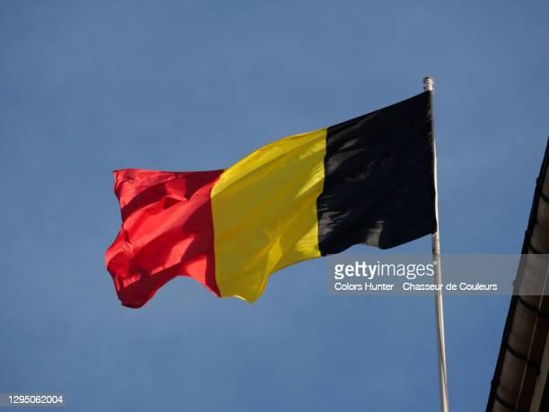 national belgian flag on his mast - belgische cultuur stockfoto's en -beelden