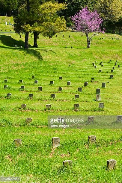 national cemetery at vicksburg national military park - vicksburg_national_military_park stock pictures, royalty-free photos & images